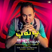 Meysam-Rastegar---Pa-Na-Pa