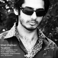 Milad-Shahbazi---Tavahom