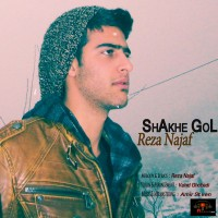 Reza-Najaf---Shakhe-Gol
