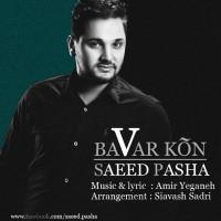 Saeed-Pasha-Bavar-Kon