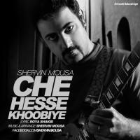 Shervin-Mousa-Che-Hesse-Khobiye