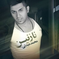 Mohammad Abdoli - Nazanin