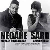 Mohsen Soltantabar Armin Vahedi - Negahe Sard