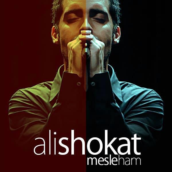 Ali Shokat - Mesle Ham