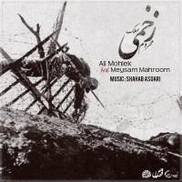 Meysam Mahroom Ali Mohlek - Zakhmi