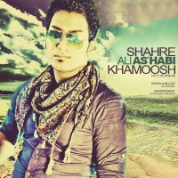 Ali-Ashabi-Shahre-Khamoosh-(New-Version)