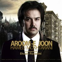 Hamed-Mokhtarani-Aroome-Joon