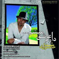 Hamed-Moradi-Daram-Ashegh-Misham