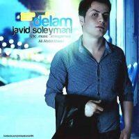 Javid-Soleymani-Delam