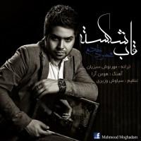 Mahmoud-Moghadam-Ghabe-Shekaste