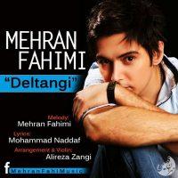 Mehran-Fahimi-Deltangi