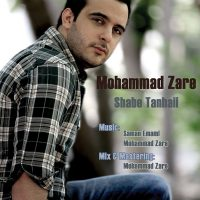 Mohammad-Zare-Shabe-Tanhaee