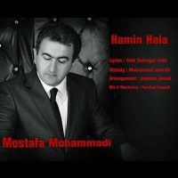 Mostafa-Mohammadi-Hamin-Hala