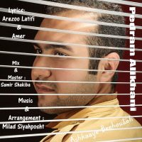 Pedram-Alikhani-Ashkaaye-Bihoudeh