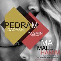 Pedram-Dadashi-Ma-Male-Hamim-(Ft-Yasmin-Emileen)