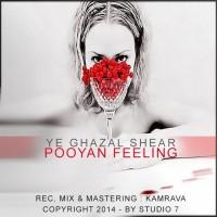 Pooyan-Feeling-Ye-Ghazal-Shear