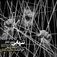Majid-Ghafari-Tanhaei