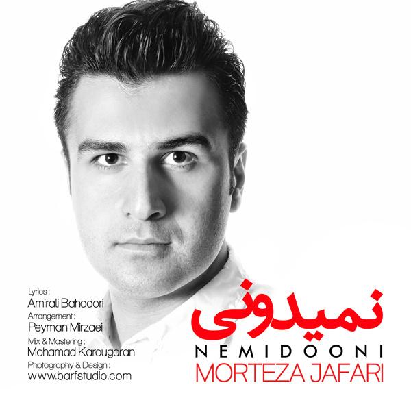 Morteza Jafari - Nemiduni