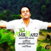 Amir-Hafez-Niaz