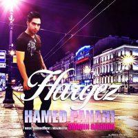Hamed-Panahi-Hargez