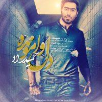 Hamid-Raad-Dele-Vamoondeh