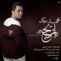 Mohammad-Zanganeh-Bazicheh
