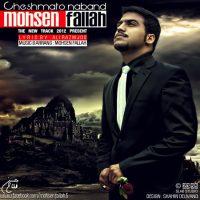 Mohsen-Fallah-Cheshmato-Naband
