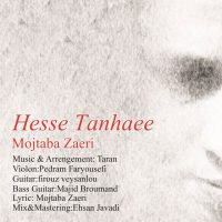 Mojtaba-Zaeri-Hesse-Tanhaee