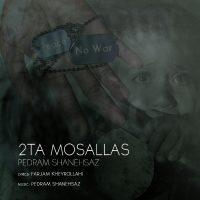 Pedram-Shanehsaz-2-Ta-Mosallas