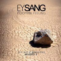 Pooyan-Feeling-Ey-Sang