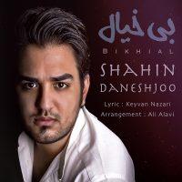 Shahin-Daneshjoo-Bikhial