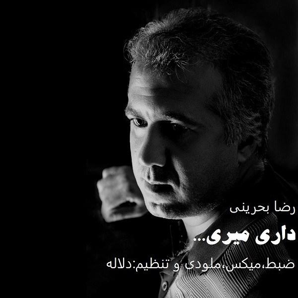 Reza-Bahraini-Dari-Miri
