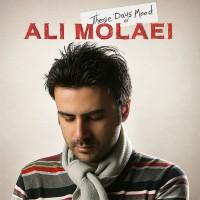 Ali-Molaei-Hale-In-Rooza