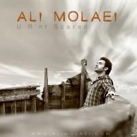 Ali-Molaei-To-Nemitarsi