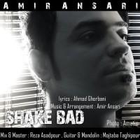 Amir-Ansari-Shake-Bad