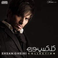 Ehsan-Gheibi-Delvapasi