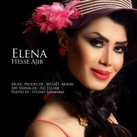 Elena-Hesse-Ajib