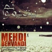 Mehdi-Behvandi-Pashimonam