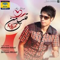 Mehrdad-Abbasi-Ghalbe-Man