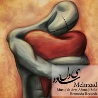 Mehrzad-Hey-Dele-Sadee