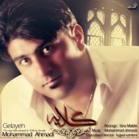 Mohammad-Ahmadi-Gelayeh
