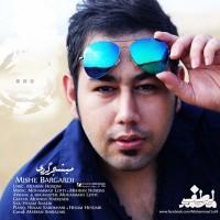 Mohammad-Lotfi-Mishe-Bargardi