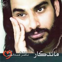 Naser-Abdollahi-Tanha