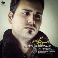 Saeed-Maarefvand-Migi-Asheghi