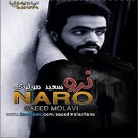 Saeed-Molavi-Naro