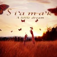 Siamak-Sarmadian-Sweet-Mystery-Of-Life