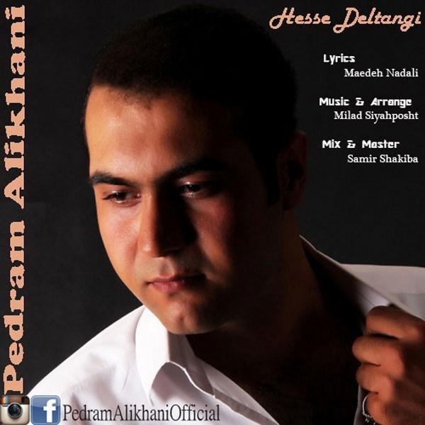 Pedram Alikhani - Hesse Deltangi