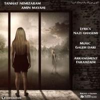Amin-Mayahi-Tanhat-Nemizaram