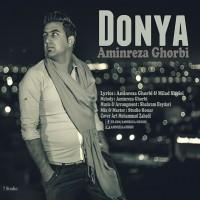 Aminreza-Ghorbi-Donya
