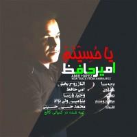 Amir-Hafez-Ya-Hosinam